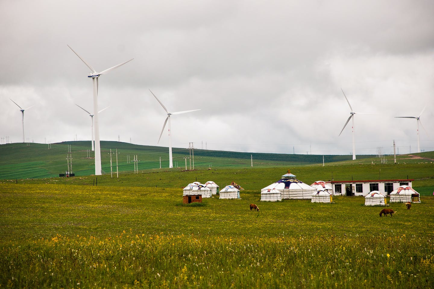 china rural wind farm