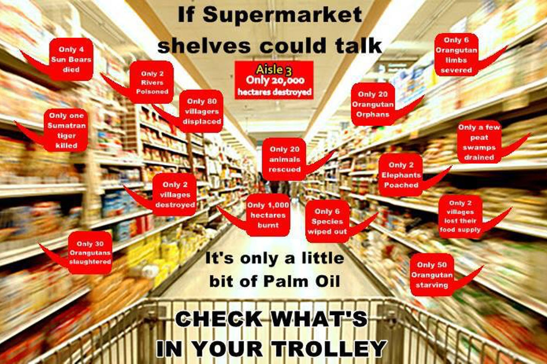 palm oil everywhere
