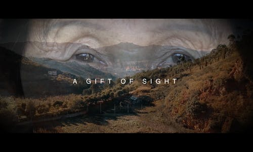 A gift of sight