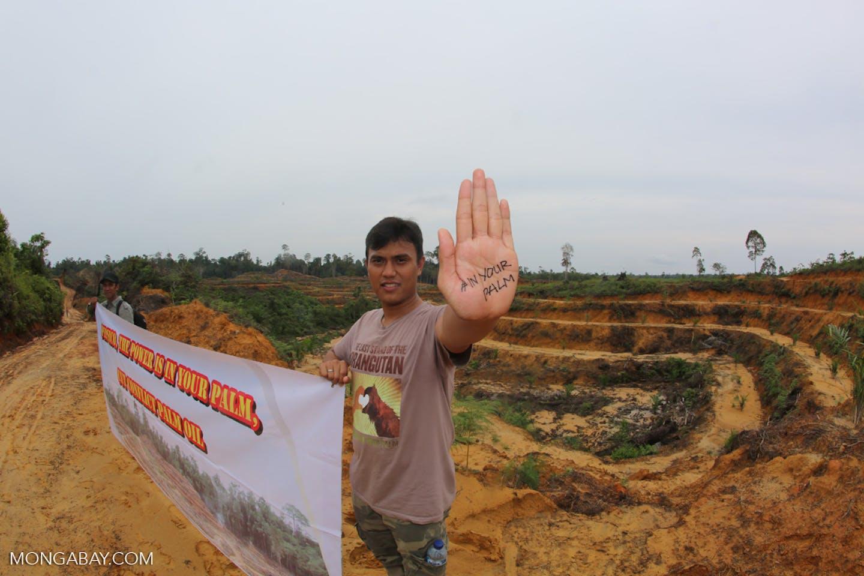 Activist vs palm oil