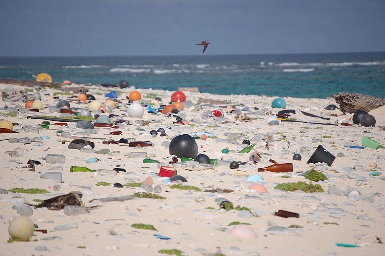 plastic at sea
