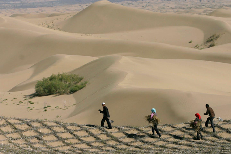 NChina desertification