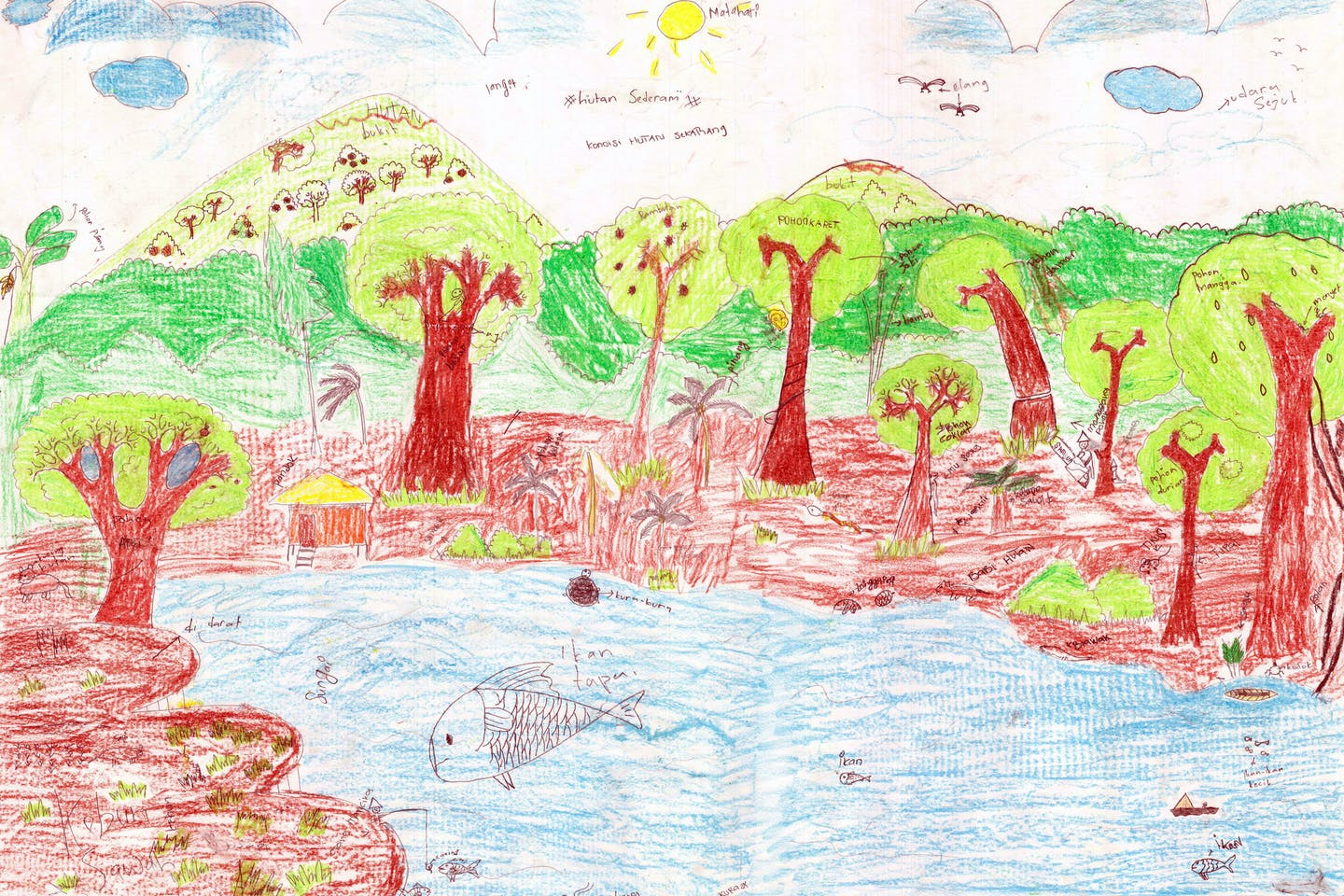 cifor children art