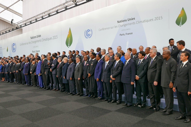 COP 21 delegates