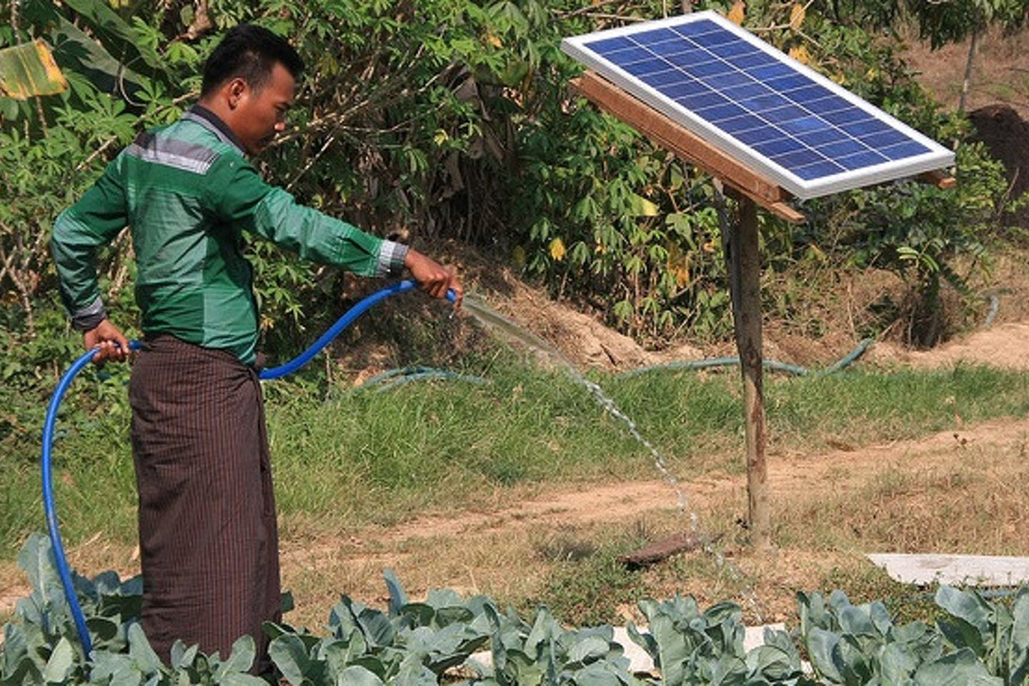 solar powered pump