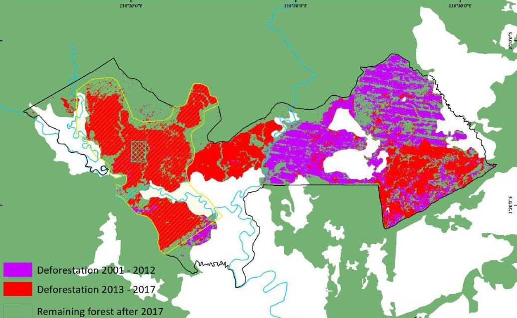 Deforestation in the concessions of PT Fajar Surya Swadaya, from 2001-2012 (in purple) and from 2013-2017 (in red). Sources: Forest cover from Indonesia's Ministry of Environment and Forestry land cover maps from 2000 and 2015, tree cover loss from Hansen et al. 2013 with updates for 2017 from Global Forest Change.