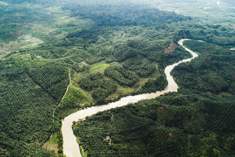 Drone footage of the #SOSsumatra campaign near the Leuser Ecosystem in Sumatra, Indonesia. Image: Nicholas Chin