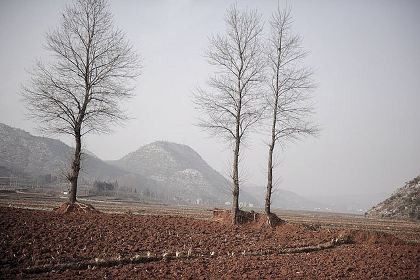 Drought in Fuyuan, China