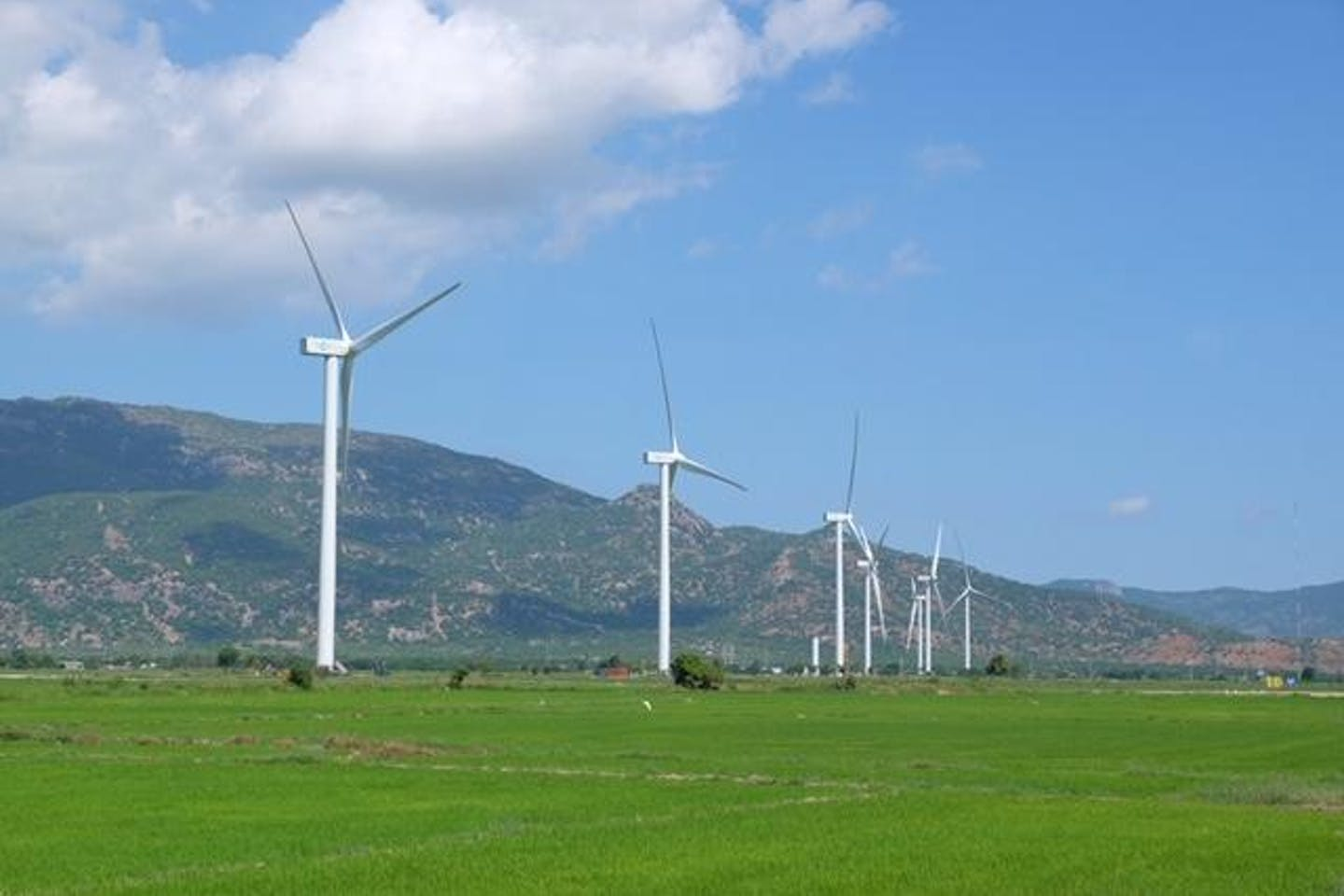 The array of wind turbines constructed for the Dam Nai Project in Ninh Thuan Province, South Vietnam. Photo by The Blue Circle.