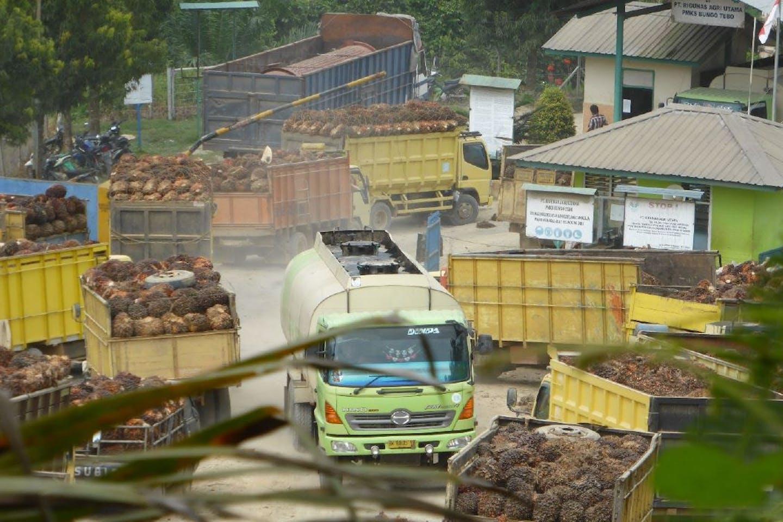 CPO truck EOF