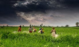Why is Asia so food insecure?
