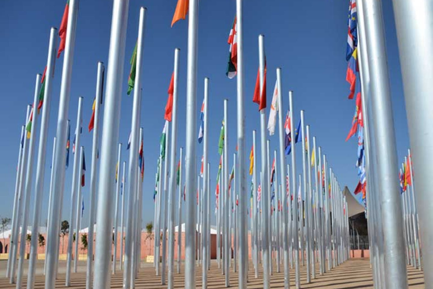 flags of nations at COP22