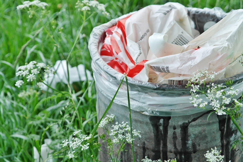 garbage can pixabay