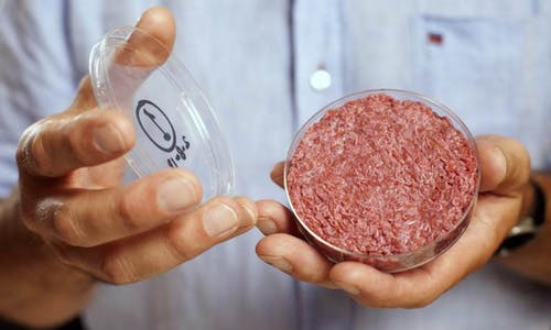 Lab-grown steak could be worse for climate than flatulent cattle—scientists