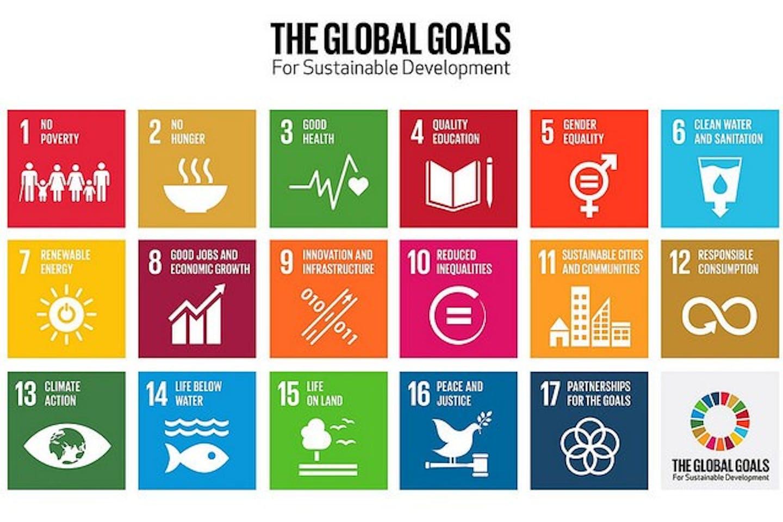 The UN SDGs, also known as Global Goals