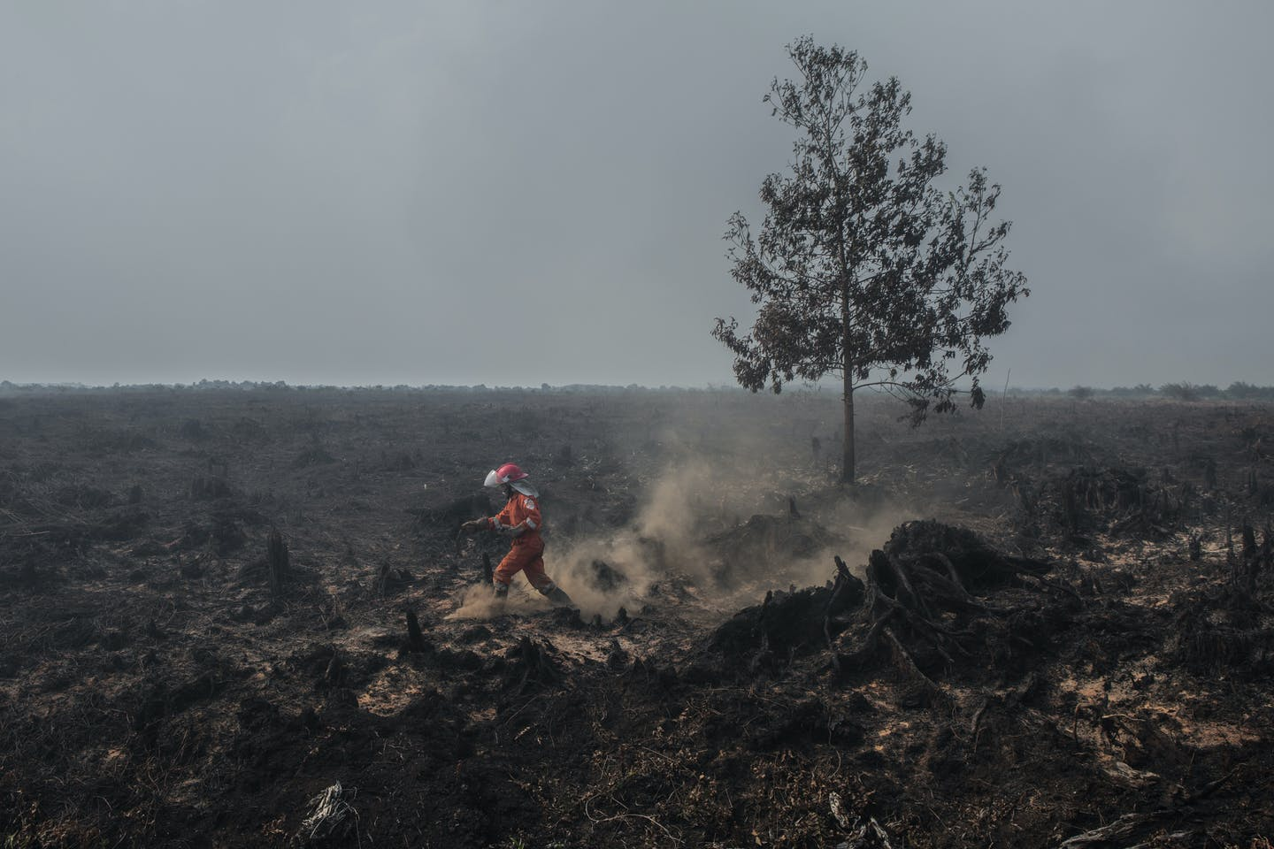 A burning peatland inside the area palm oil concession of PT Sumatera Unggul Makmur in West Kalimantan on 22 August 2018. Image: Greenpeace