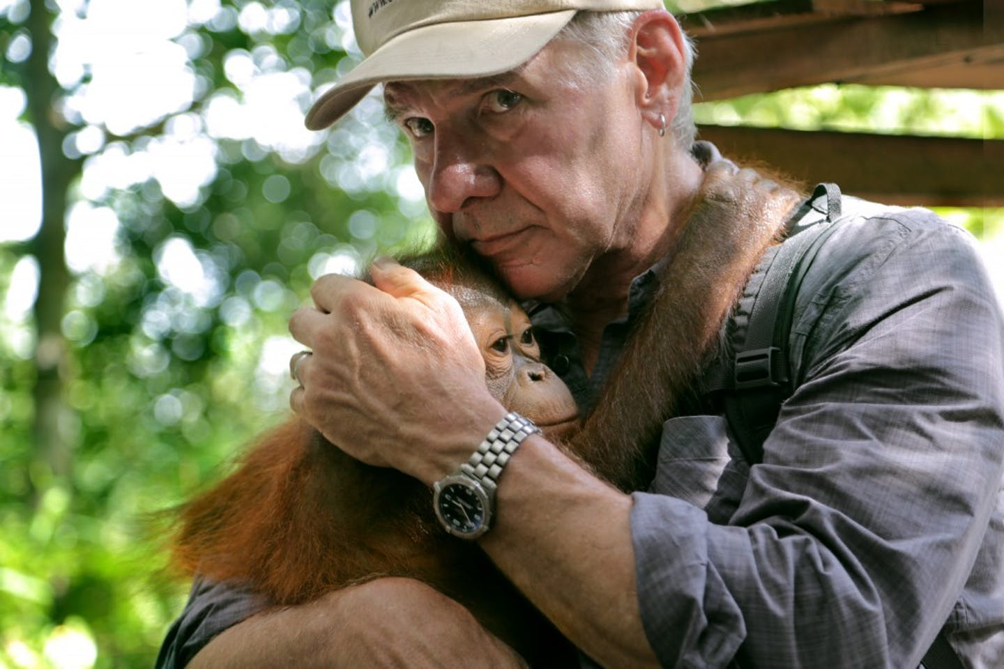 Harrison Ford forest Indonesia