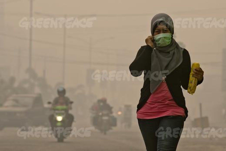 sumatra haze palm oil innovation group