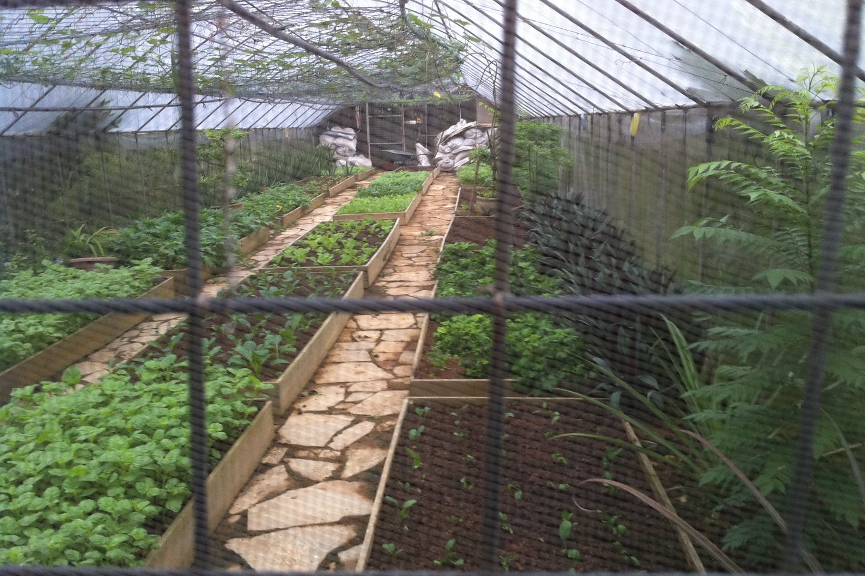 farm plot