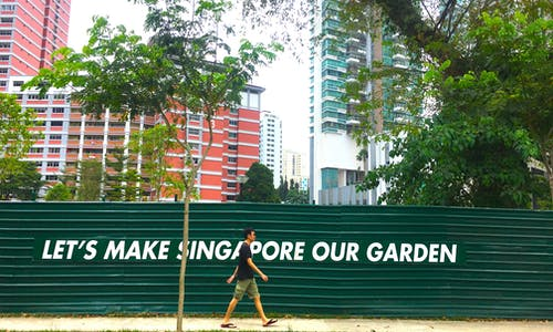 Can Singapore, the city in a garden, grow into a city in nature?