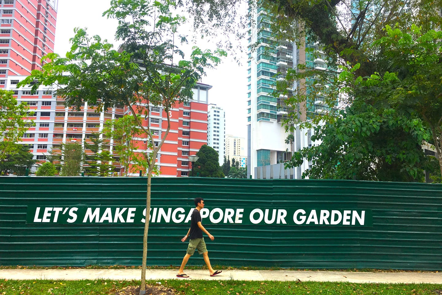 Singapore's 'City in a Garden' plan has seen a network of parks, nature reserves and greened buildings span the 70 kilometre-squared island—but the country has just 0.5 per cent primary forest cover left. Image: Eco-Business