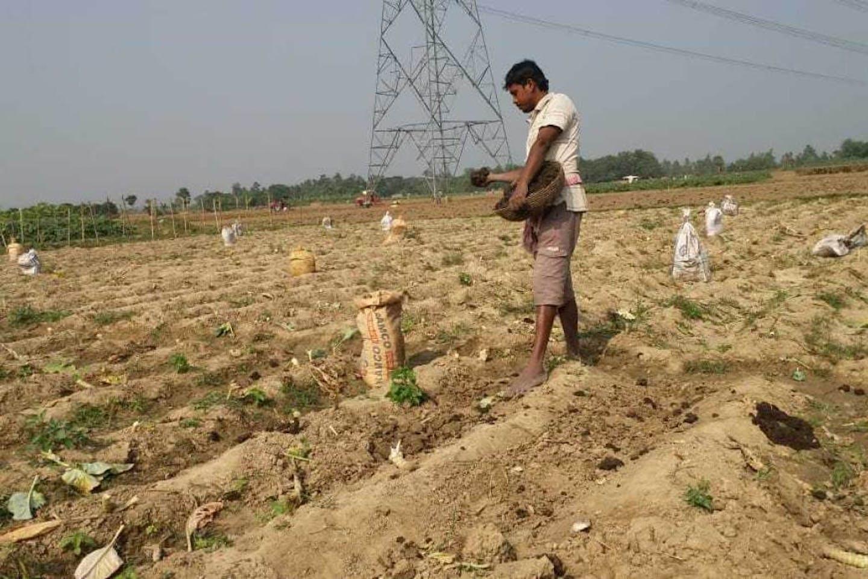 Bengal, India farmer Deepankar Mandal