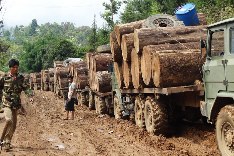 kachin timber cn