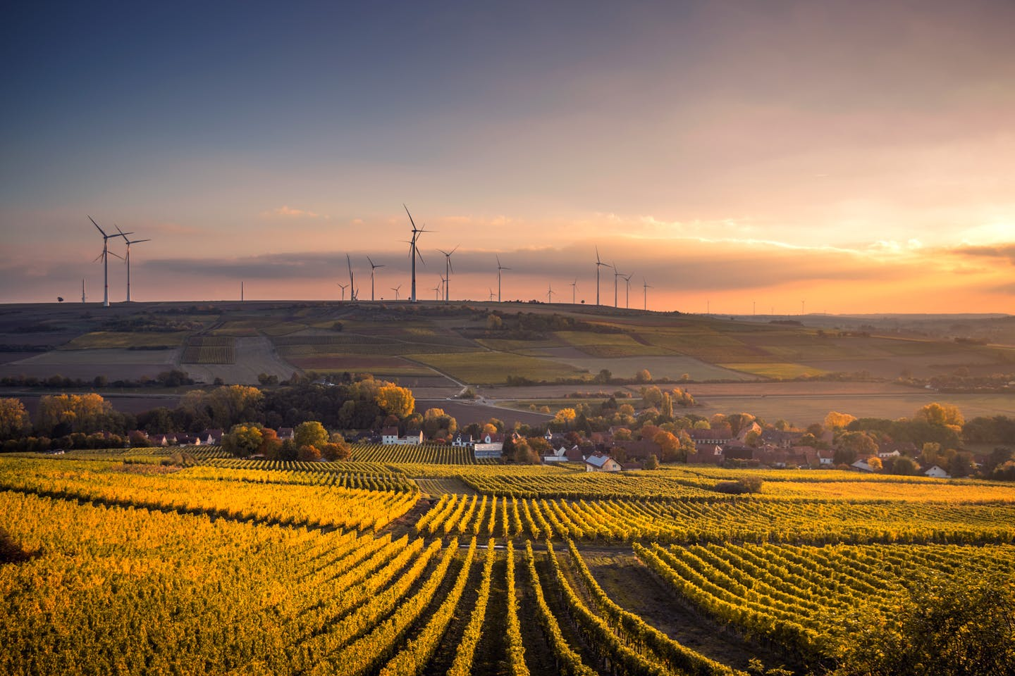 wind turbines and beautiful scenery