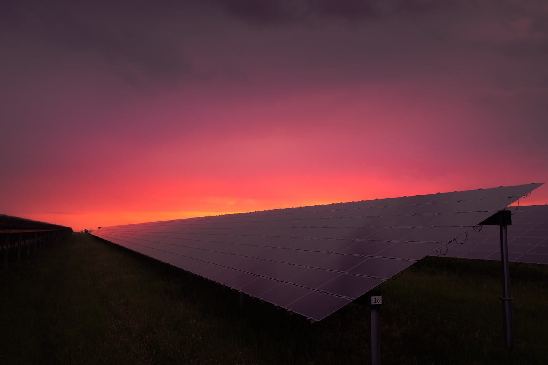 Solar panel biotech