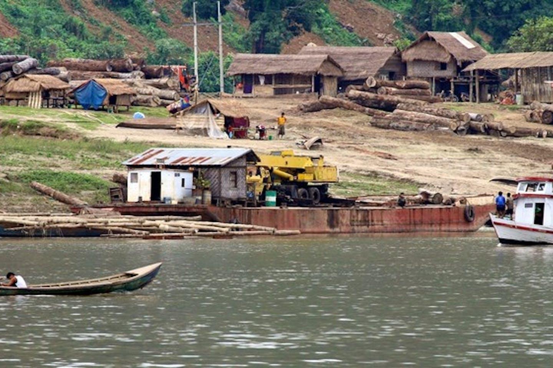 Hardwood logging ban in Myanmar