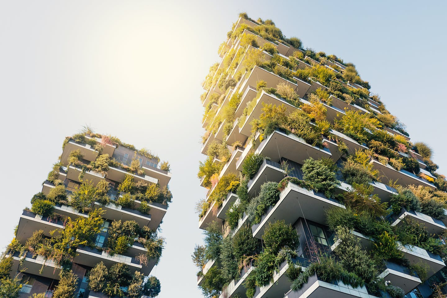 Re-imagining a brighter future: green buildings with urban farming. Image: Olam International