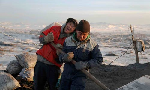 Climate-stressed Mongolia urged to put yaks before mines