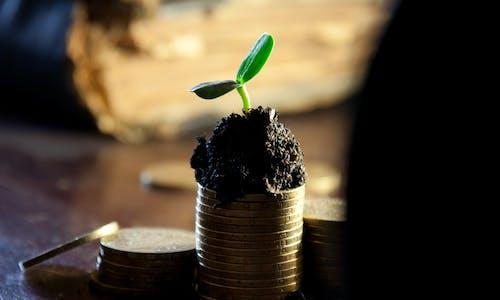 How China grew its US$30 billion green bond market