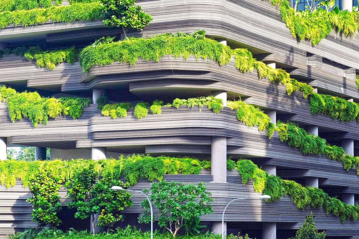 Green buildings, Singapore's natural ally in climate change fight ...