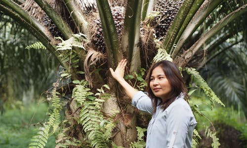 What does sustainable palm oil mean to smallholders?