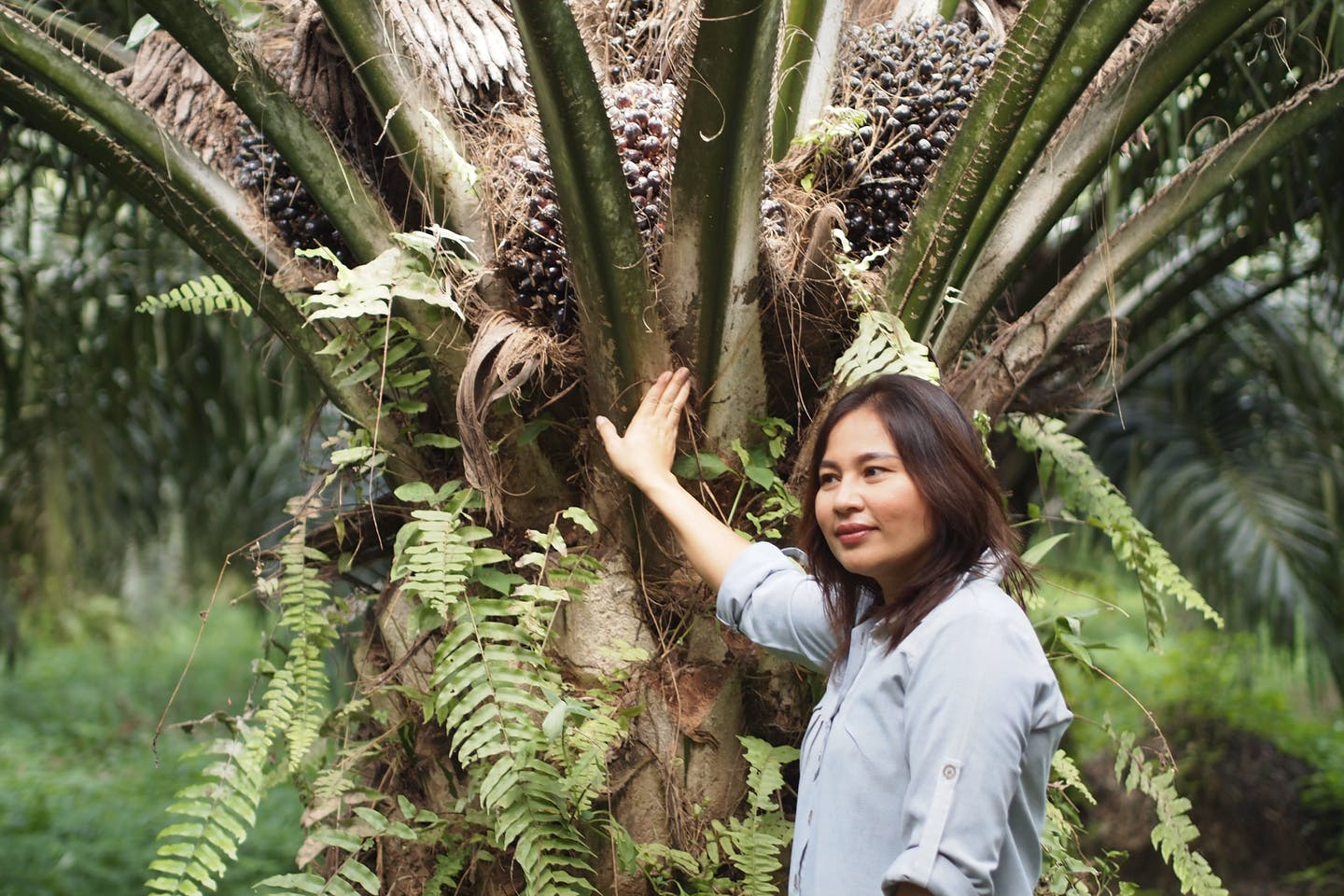 46 year-old former bank manager and mother of two Pornsiri Raknukul now runs her own RSPO-certified palm oil plantation in Southern Thailand. Image: RSPO