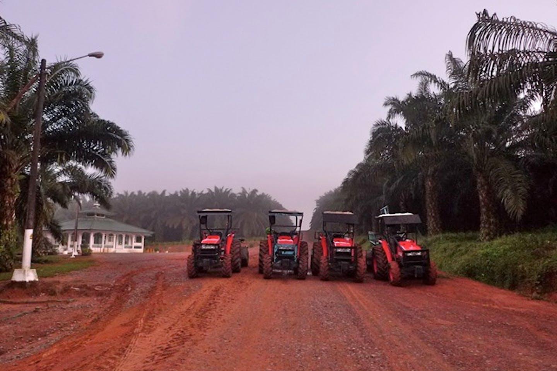 palm oil Cargill