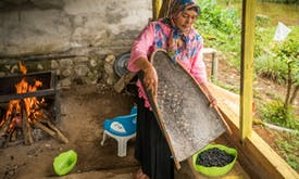 Renewable brew: Indonesian geothermal project energises women coffee growers