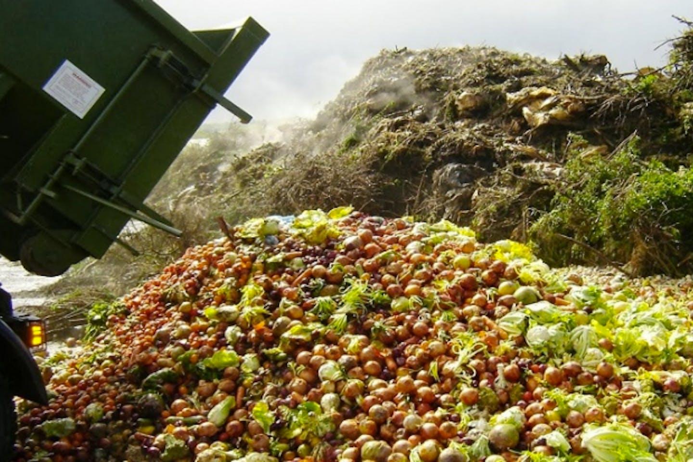 food waste by truckloads
