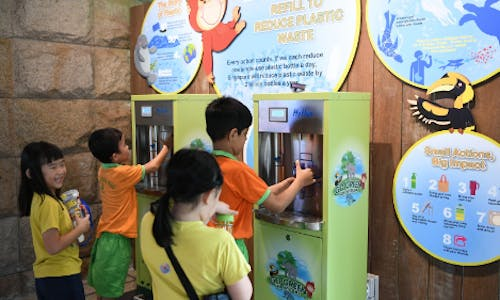 Sustainable packaging: How Singapore firms are getting it right