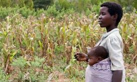 Millions of women still landless despite global push for equality