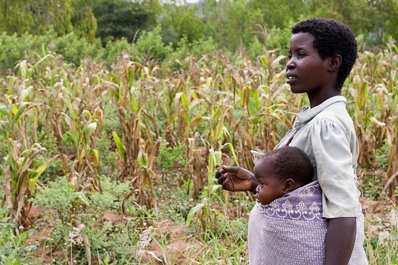 woman farmer africa