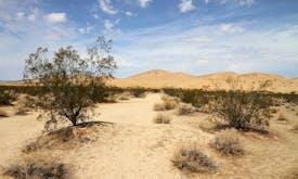 Drought intensifies in western US