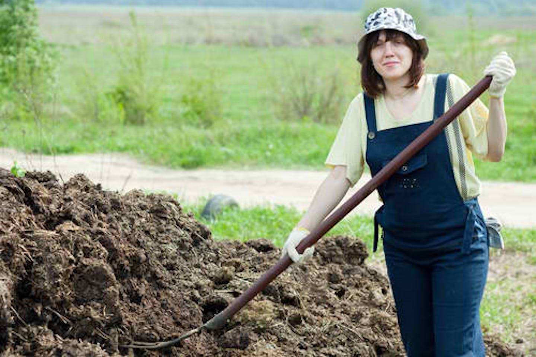 manure organic soil