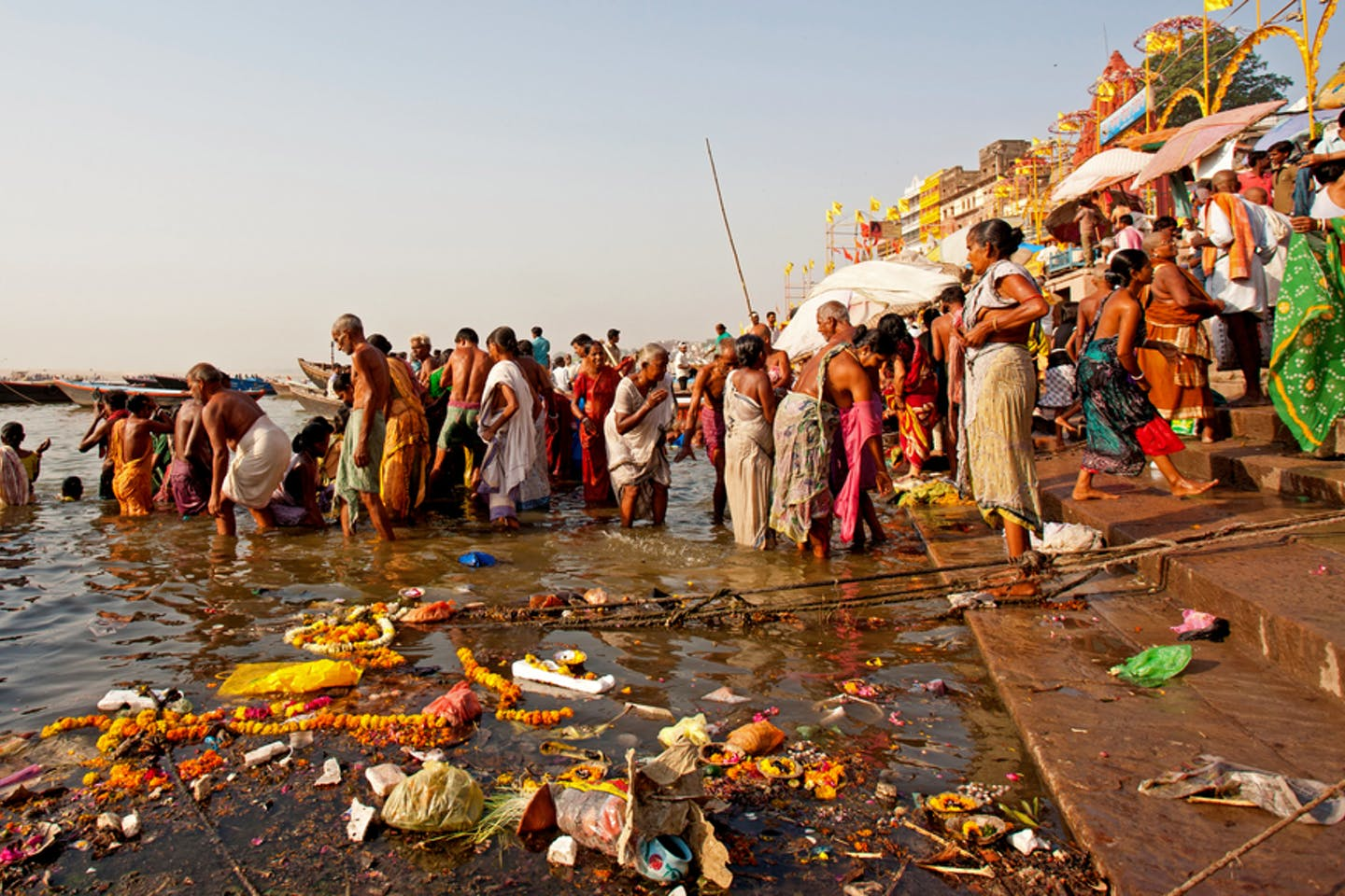 polluted ganges