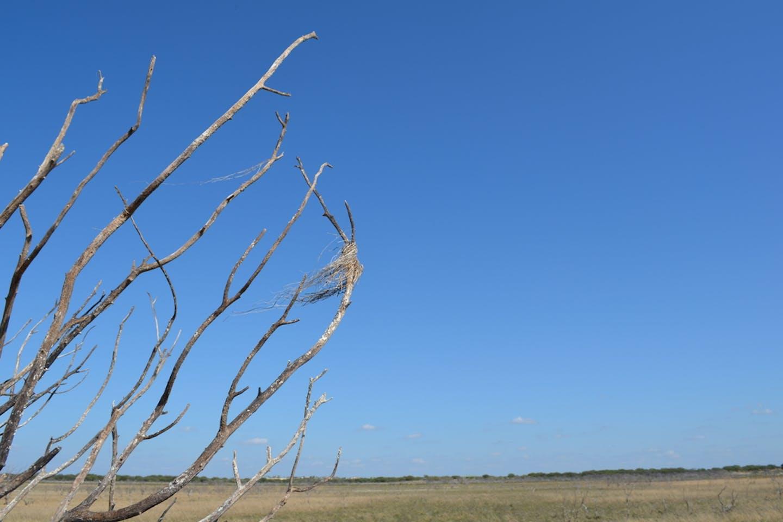 drought lake amistad texas