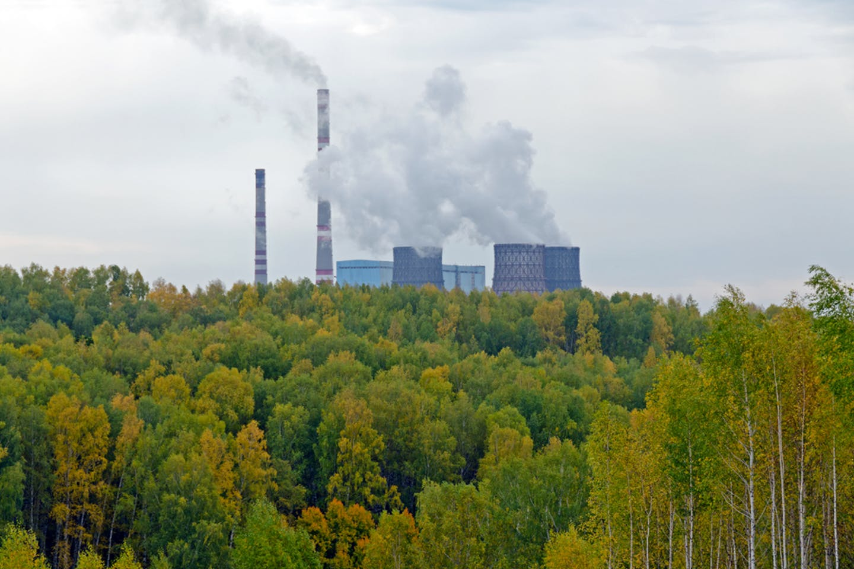 coal nature