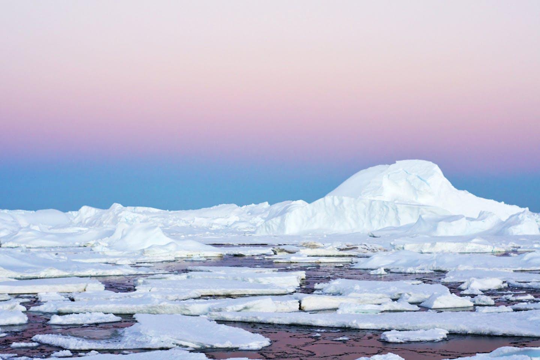 antarctic amundsen