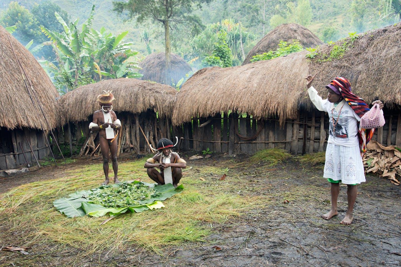 indigenous papua
