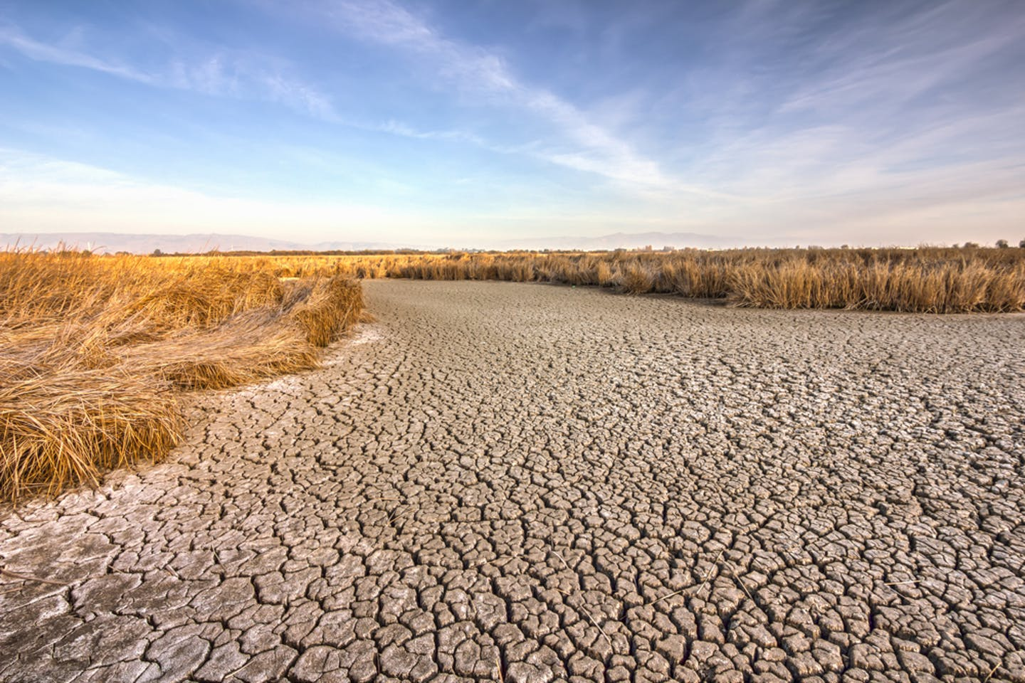 california drought landscape
